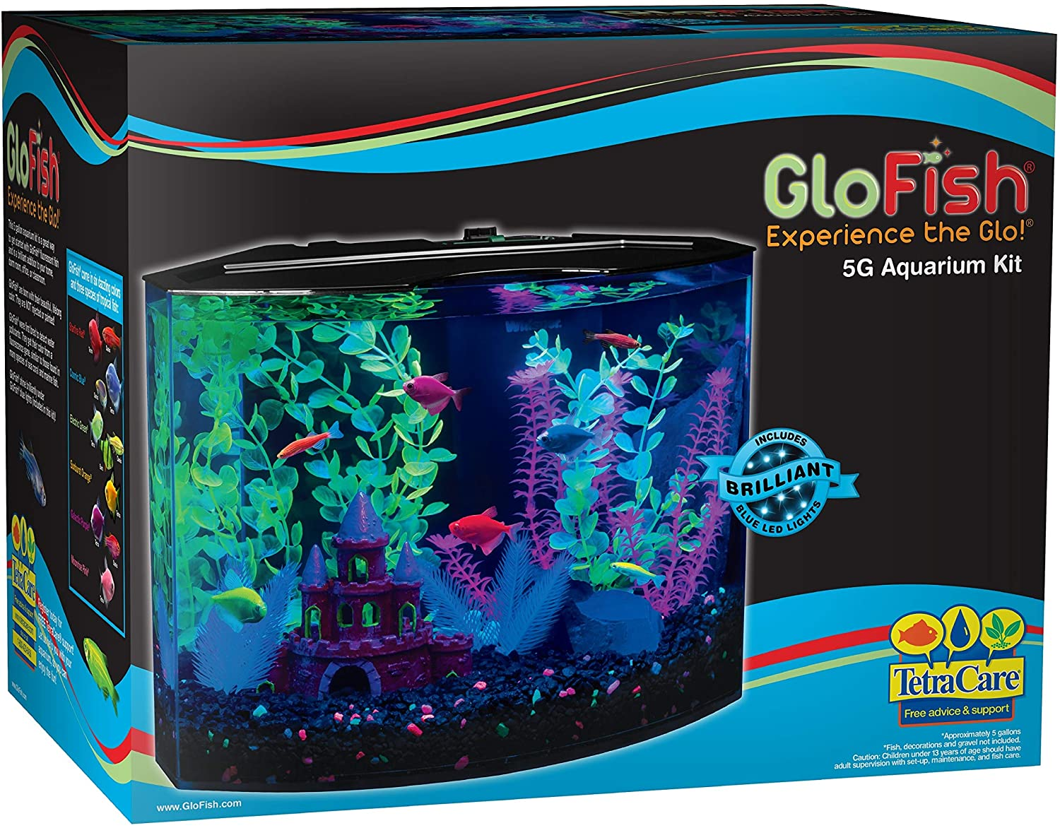 GloFish Glow In The Dark Fish tank 1