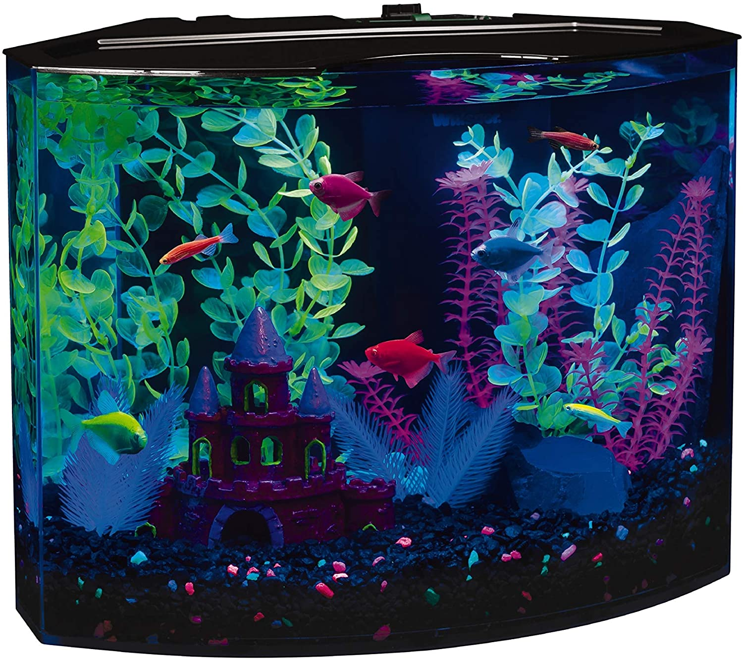 GloFish Glow In The Dark Fish tank 3