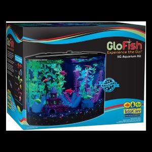 GloFish Glow In The Dark Fish tank