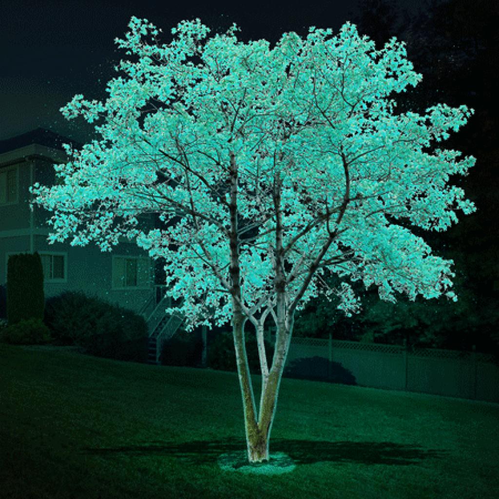 DayGlo glow in the dark tree
