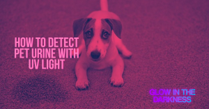 detect pet urine