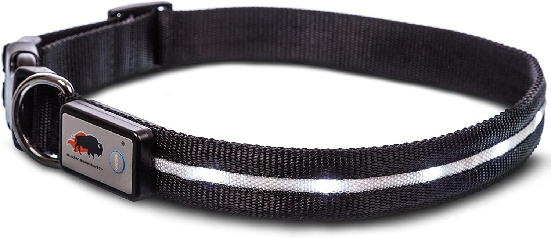 Blazin Safety LED dog collar 4