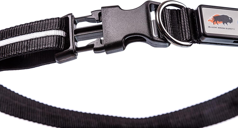 Blazin Safety LED dog collar 5