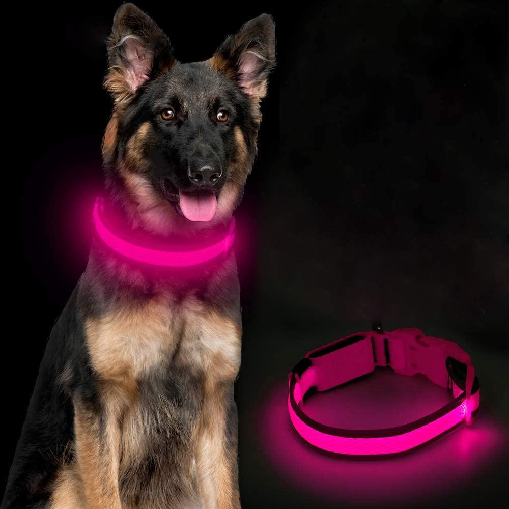 Ezier LED dog collar 1