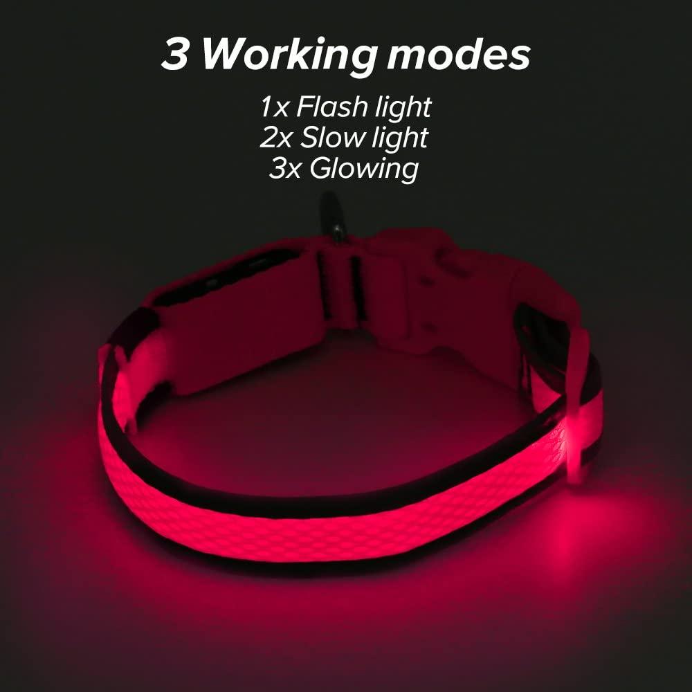 Ezier LED dog collar 5