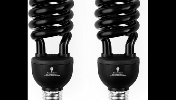 BlueX CFL 2 pack Glow in the Dark Black Light bulbs, detailed review